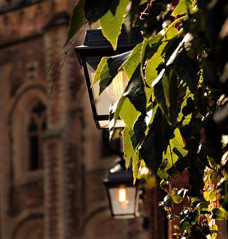 Lantern, Church, Vine Leaves, Light, Alley