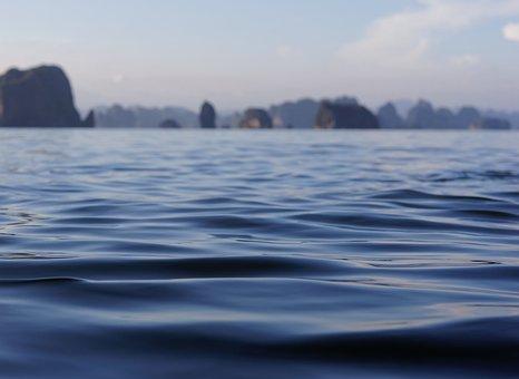 Water, Sea, Coast, Deep, Islands, Liquid, Land, Plants