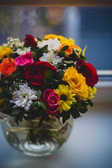 Colorful, Flower, Plant, Nature, Petals, Jar, Vase