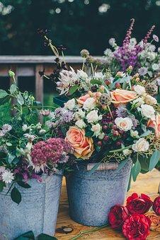 Plants, Flower, Decor, Bunch, Roses, Bucket, Petals