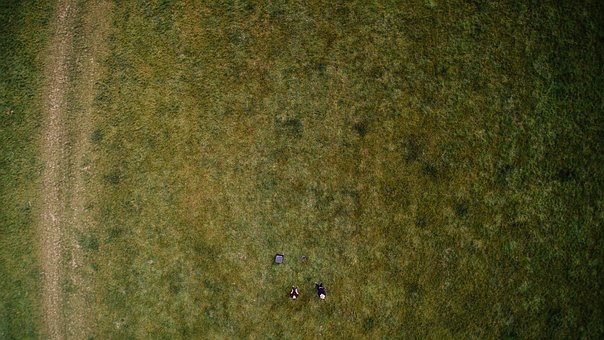 Aerial, Forest, Woods, Trees, People, Camp, Grass, Bond