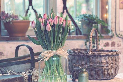Flower, Pink, Petal, Bloom, Garden, Plant, Nature