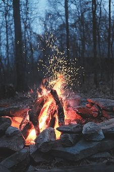 Nature, Fire, Bonfire, Camp, Outdoor, Woods, Forest