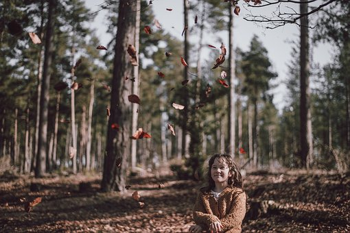 People, Girl, Child, Smile, Happy, Dry, Leaves, Falling