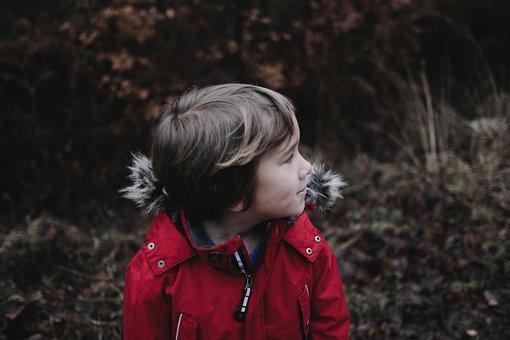 People, Boy, Child, Jacket, Red, Bokeh, Blur, Plants