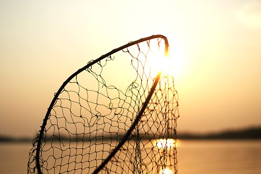 Net, Fishing, Steel, Sun, Water, Sea, Nature, Bokeh