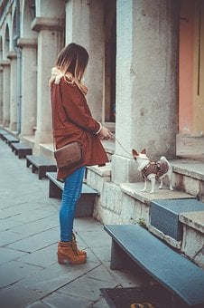 People, Woman, Fashion, Boots, Street, Dog, Puppy, Pet