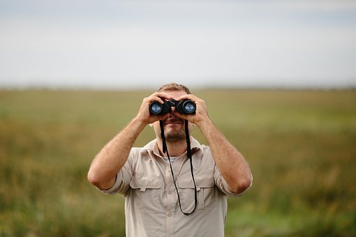 People, Man, Binoculars, Green, Nature, Landscape