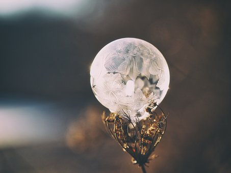 Crystal, Ball, Glass, Round, Plant, Bokeh, Blur, Stem