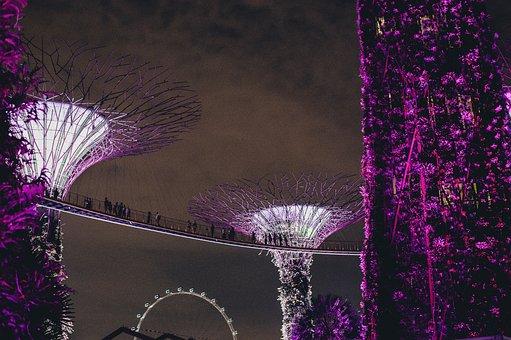 Bridge, Lights, Tower, Hanging, People, Men, Women