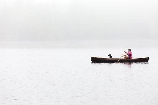 People, Man, Dog, Animal, Ocean, Sea, Beach, Paddle