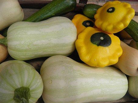 Squash, Courgettes, Patty Pan, Butternut, Vegetables