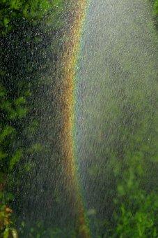 Rainbow, Water, Spray, Water Splashes, Garden, Green