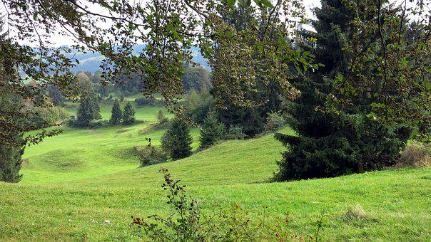 Allgäu, Landscape, Rettenberg