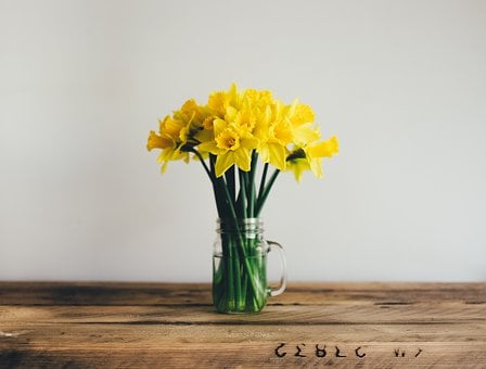 Yellow, Flower, Stem, Water, Glass, Wooden, Table, Wall