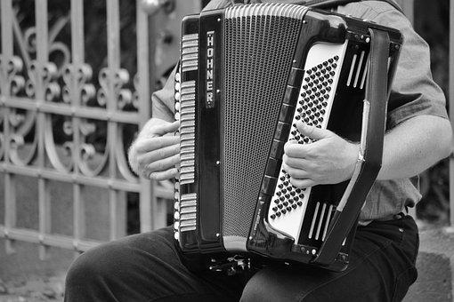 Accordion, Musical Instrument, Keyboard Instrument