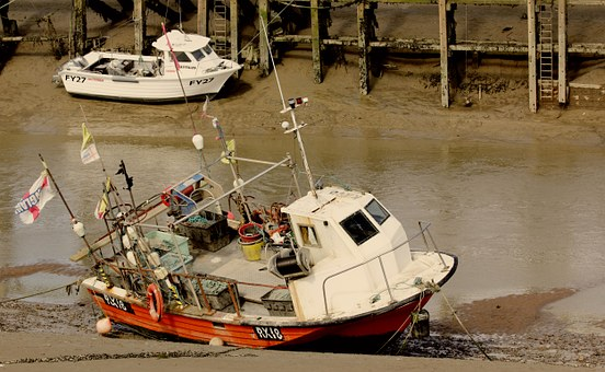 Boats, Fishing, Water, Sea, Ocean, Fish, Vessel