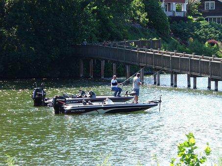 Fishing, Fisherman, Rod, Nature, Water, Leisure, Sport