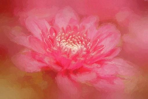 Flower, Artwork, Painting, Artist Painting