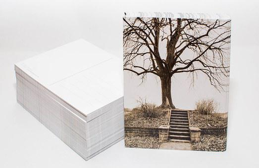 Postcard, Photo Postcard, Printed Matter, Photo
