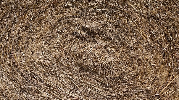 Dry Grass, Farm, Straw, Agriculture, Countryside