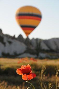 Balloon, Ballooning, Cappadocia, Turkey, Poppy, Red