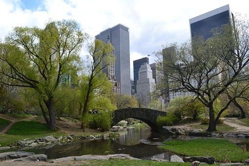 Central Park, New York, Bridge, Manhattan, Nyc