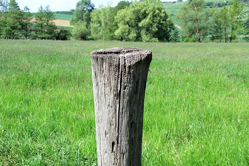Pile, Wood Pile, Wood, Post, Wooden Posts, Fence Post
