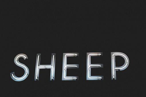Letters, Font, Sheep, Light, Dark, Gray Letter