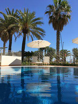 Summer, Holidays, Swimming Pool, Trees, Parasol