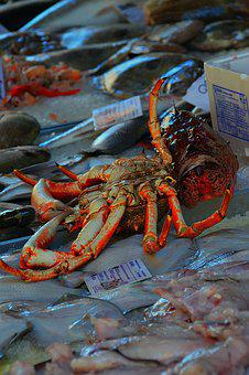Cancer, Fish Market, Tenge Fruits Of, Sea, Living