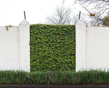 Wall, Green, White, Pillar, Foundation, Grass