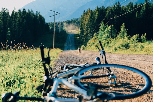 Bike, Bicycle, Travel, Biking, Adventure, Outdoor
