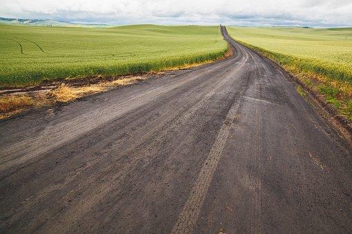 Green, Grass, Ricefield, Road, Path, Field, Farm, Crops