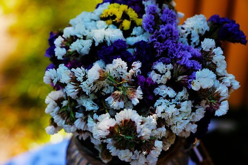 Colorful, Petal, Bunch, Flower, Vase