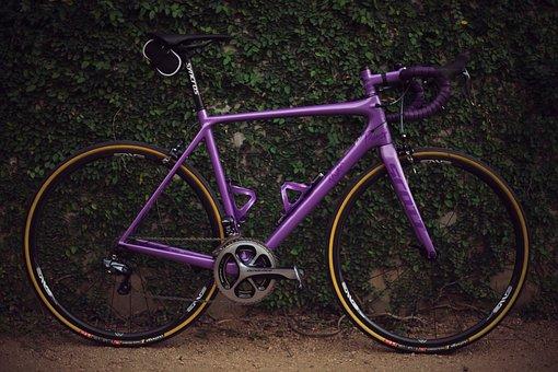 Purple, Bike, Bicycle, Wheel, Travel, Green, Plant