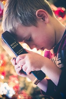 Holy, Book, Bible, Reading, Religious, Hand, Bokeh, Kid