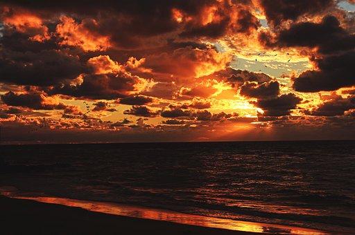 Sea, Ocean, Water, Waves, Nature, Beach, Coast, Shore