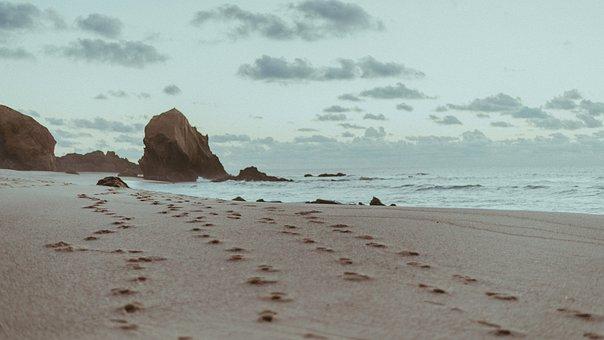 Sea, Ocean, Water, Waves, Nature, Footprints, Beach