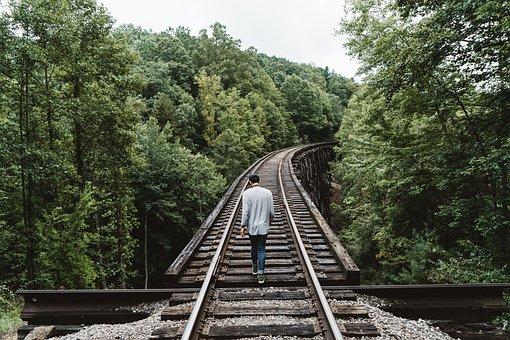 People, Man, Alone, Walking, Travel, Trees, Green