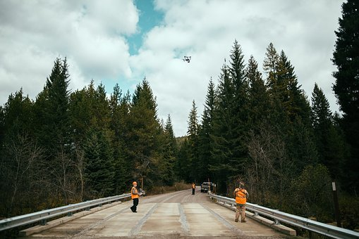 Road, People, Photographer, Men, Trees, Plant, Sky