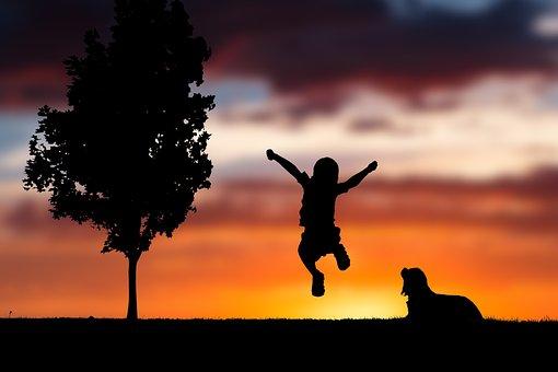 Sky, Clouds, Orange, Sunset, Silhouette, Dog, Puppy
