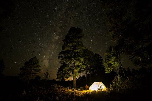 Travel, Adventure, Camping, Night, Dark, Stars, Trees