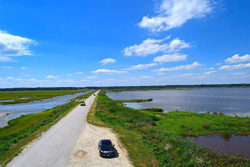 Marsh, Roadway, Water, Grass, Nature, Landscape, Green