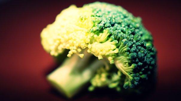 Broccoli, Raw, Fresh, Food, Vegetation, Green, Cook