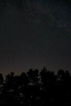 Night, Dark, Trees, Shadow, Galaxy, Space, Stars, Sky