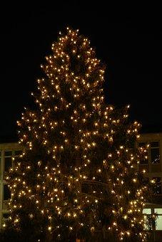Christmas, Lichterkette, Tree, Lighting, New Ulm