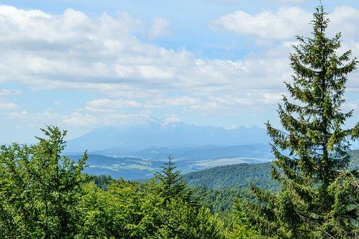 Mountain Landscape, Panorama Mountain, High Tatras