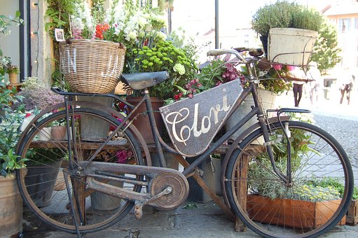 Bike, Bicycle, Flower, Plants, Nature, Pot