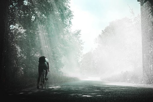 Guy, Man, Male, People, Cycling, Bicycle, Road, Path